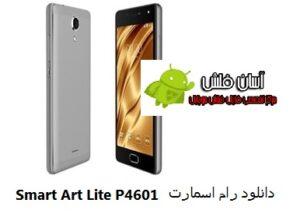 Smart Art Lite P4601